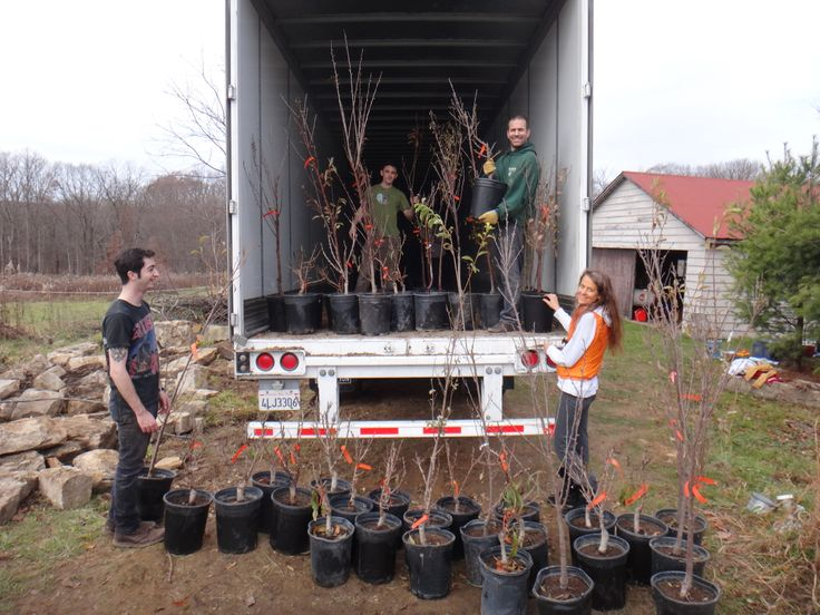 From the Fruit Tree Planting Foundation's new, first of its kind fruit tree nursery in Western Pennsylvania, made possible through the amazing generosity of #Davines Salons and their customers during Sustainable Beauty Days 2012 & 2013.