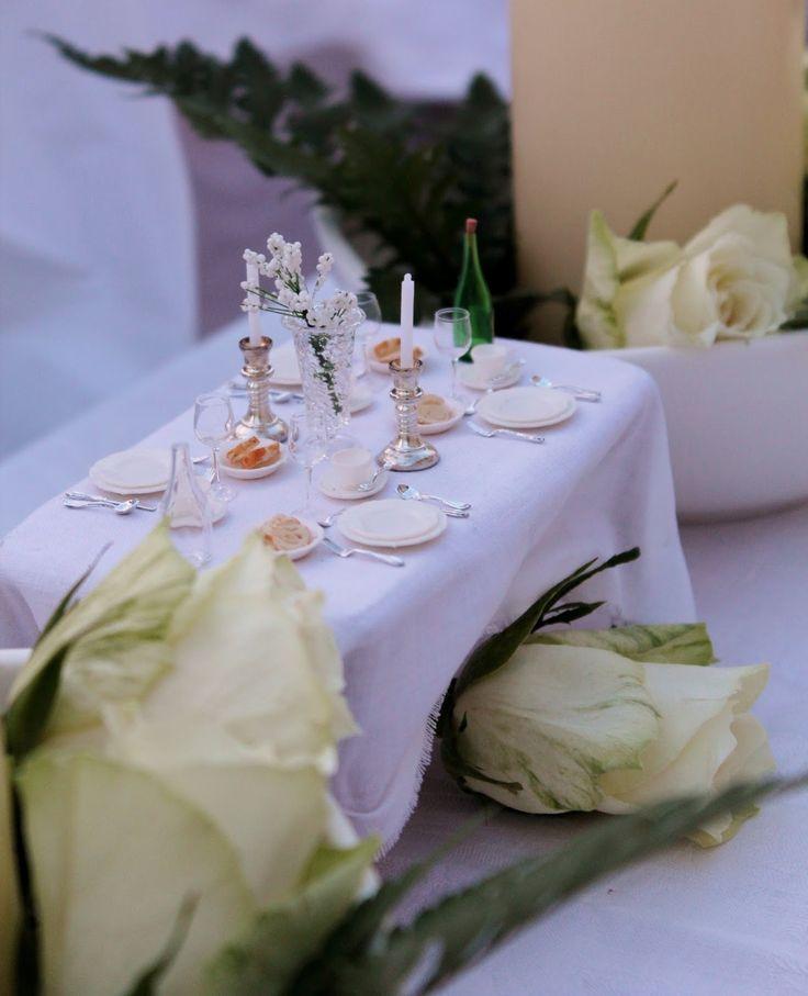 Minilisa: Cena in bianco Torino 2014
