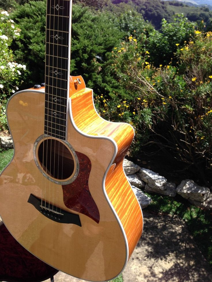 Famous Diagram Math Huge 2 Humbuckers In Series Shaped Tsb Search Push Pull Volume Pot Wiring Youthful Bulldog Security Remote Starter With Keyless Entry SoftSecurity Wiring 25 Best Taylor And Other Favorite Guitars Images On Pinterest ..