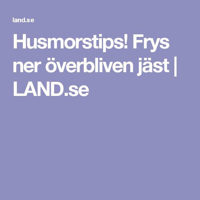 Husmorstips! Frys ner överbliven jäst   LAND.se