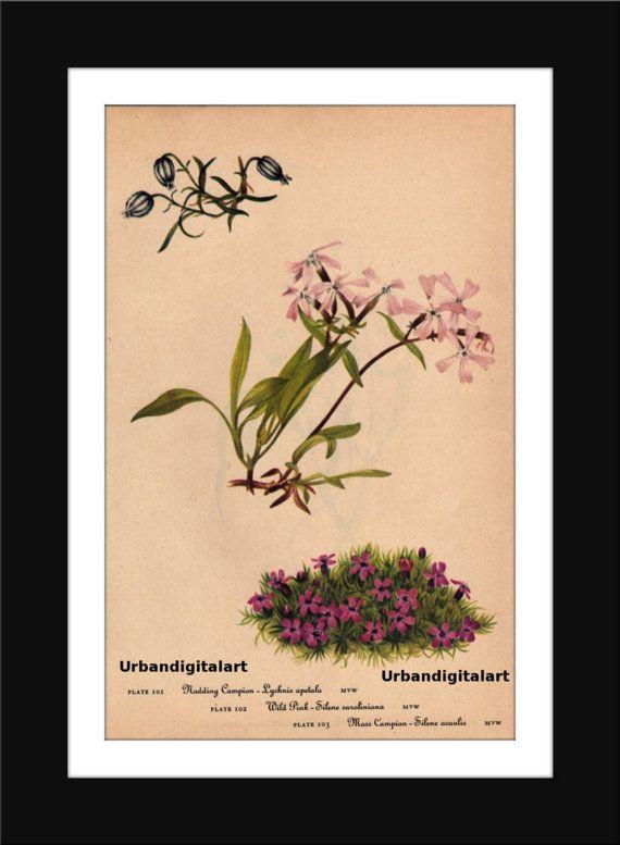 Vintage Wildflowers-Downloadable Vintage  Art by UrbanDigitalArt