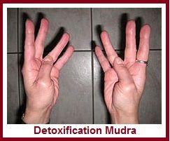 Hand Mudras for Helping Detox Body balancedwomensblog.com