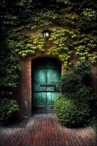 secret garden: Green Doors, The Doors, Blue Doors, Secret Places, Teal Door, Garden Doors, Gardens Doors, The Secret Gardens, Secret Doors