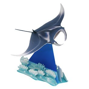 Manta ray - Other Animals - Animals - http://cp.c-ij.com/en/contents/3157/manta-ray/index.html