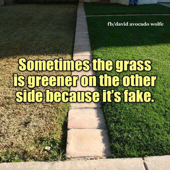 Real grass (like our marriage) has roots...your affair with her was selfish and shallow.