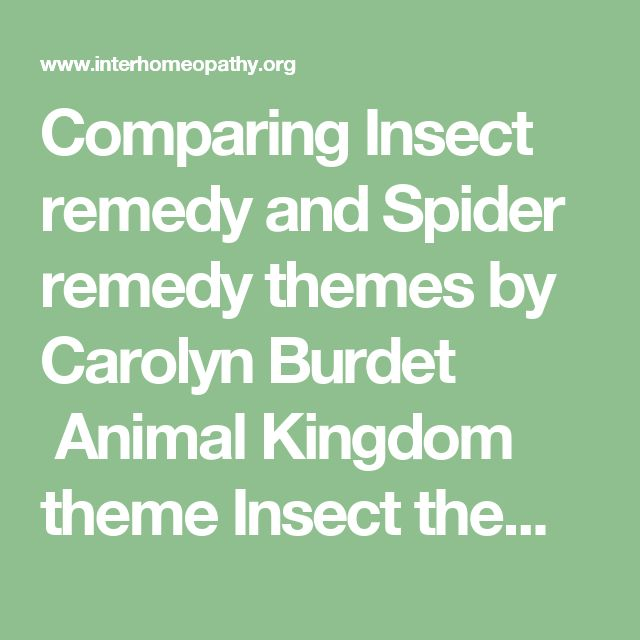 Comparing Insect remedy and Spider remedy themes  by Carolyn Burdet  Animal Kingdom theme  Insect theme  Spider theme  Competitive     Ambitious, hard working, work for the corporation. Striving, need to achieve goals for validation and material gain.  Ambition to be someone big or to do something big. Ambitious to become bigger. Attention seeking  Competition with a Winner/Loser  Ambitious to do better, improve, get ahead, make something of their life,  Competitive power struggle. Wants to…