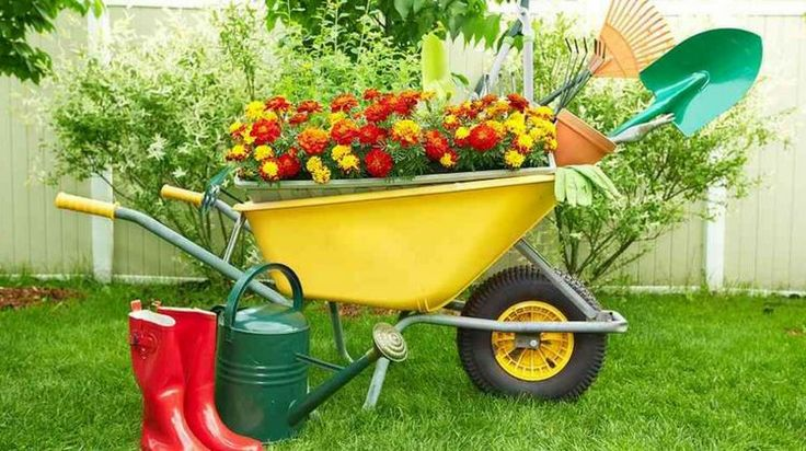 Want to know what gardening tools are perfect for your garden? Here're basic gardening tools will help you with almost everything in your gardening venture
