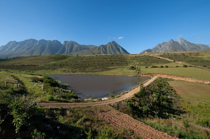 Another Stunning View At Vreda Vallei Self Catering  Eco Green Farm Swellendam Cape Town