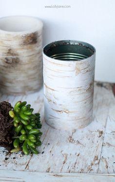 OMG, birch wood scrapbook paper wrapped jars! Simple Christmas decor, birch wood succulent planters  via lollyjane.com
