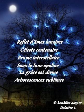 Âmes lunaires - Zen LouMiss Angel
