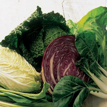 Types of cabbages - Guide on varieties of cabbage
