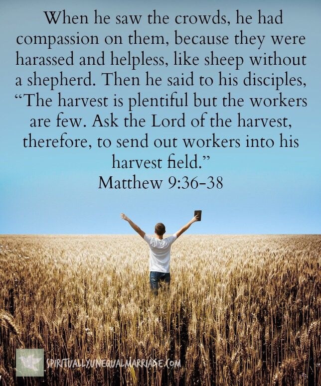 Matthew 93638  Inspiration  Bible scriptures Memory