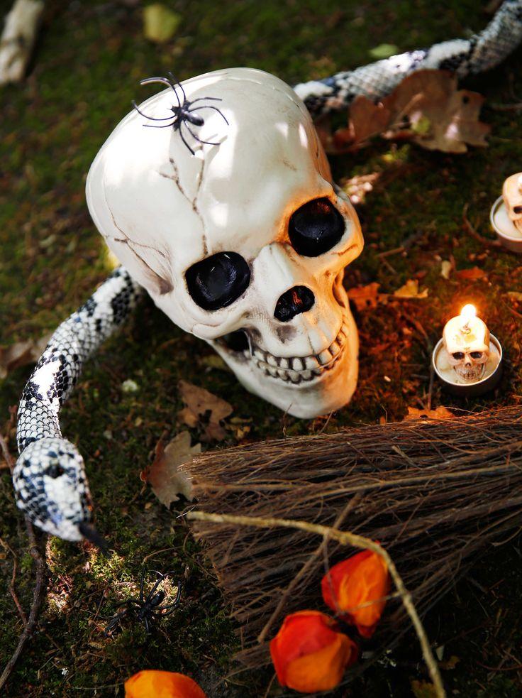 Halloween collectie 2015. Horrorfilms, griezelige kostuums en huizen die van gedaante veranderen… Dat moet Halloween zijn! Op de meest angstaanjagende dag van het jaar veranderen we onze huizen, naar Amerikaans voorbeeld, in ware spookhuizen. Jaag je gasten de stuipen op het lijf met een arsenaal aan monsters en griezelfiguren, spinnenwebben en vlaggen. Laat het huiveren en gruwelen maar beginnen!