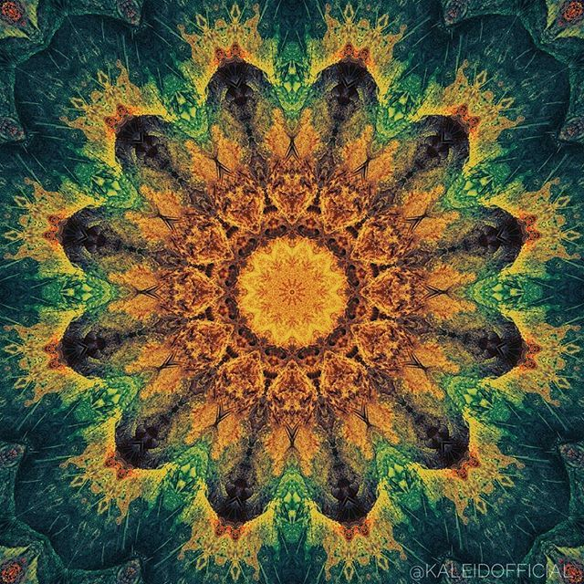 Reggae Trip  #kaleidofficial #kaleidoscope #kaleidoscopes #kaleidoscopeart #reggae #psychedelic #psychedelicart #psycart #trip #trippy #trippyart #visionaryart #pattern #design #visualart #square #shapes #abstract #symmetry  #symmetricart #symmetryaddiction #mandala #mandalaart #colorful #creative #instaart #phoneart #andoridart #mirrorlab