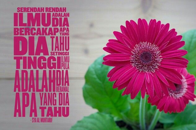Quote for today 12 Jamadilakhir 1437 by Sya Al Muhtarif