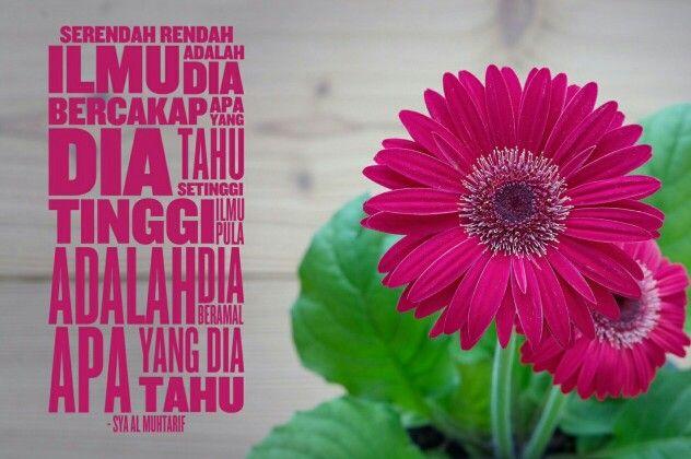 Quote for today 12 Jamadilakhir 1437 by Sya Al Muhtarif