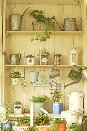 lovely garden shelves