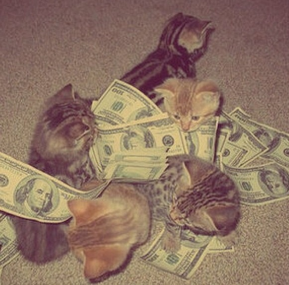 Rolling in money