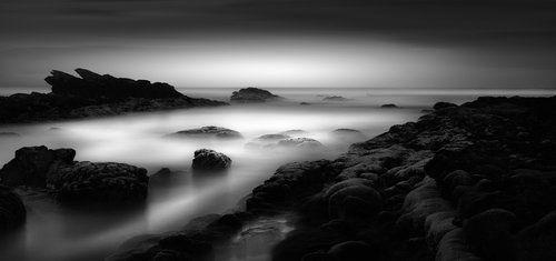 Ocean in a Drop (Paulo Abrantes)