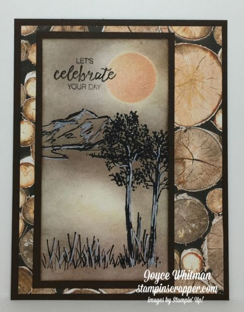 Stampin' Up! In The Meadow #140754, Wood Textures DSP #144177, designed and created by Stampin Scrapper, for more cards, gifts, ideas, scrapbooking and 3D projects go to stampinscrapper.com, Joyce Whitman