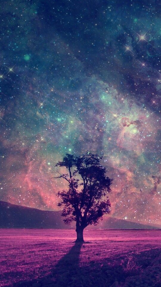 red alien landscape with alone tree silhouette in purple