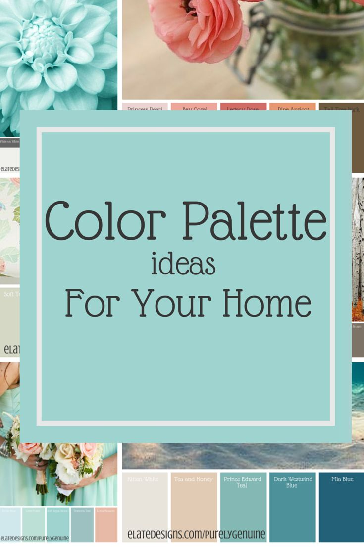 Color Palette Ideas for Your Home  http://www.elatedesigns.com/purelygenuine/color-palette-ideas-for-your-home/