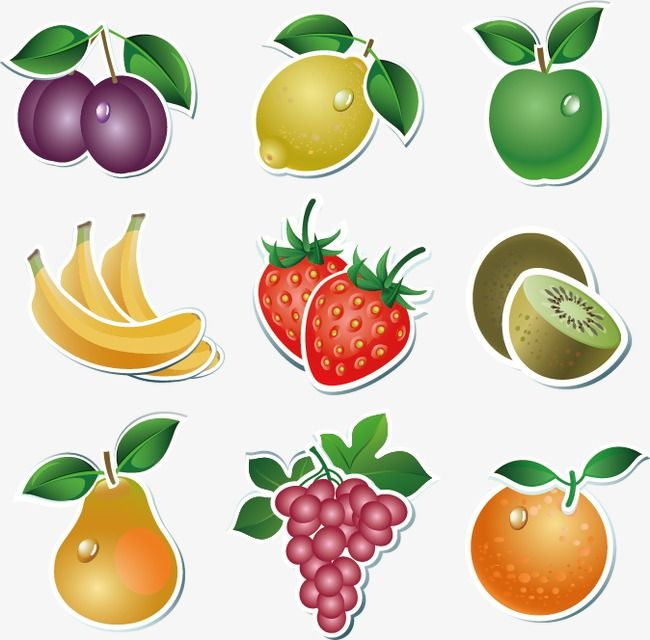 Millions Of Png Images Backgrounds And Vectors For Free Download Pngtree Fruit Vector Vegetable Cartoon Fruit Icons