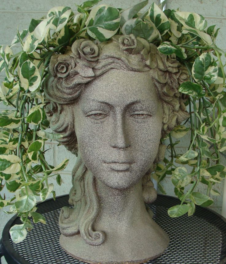 Great A New Hair U0027dou0027 For Summer. Head PlantersFlower PlantersGarden ...