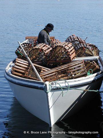 Thornlea, Trinity Bay | Newfoundland, lobster fishing