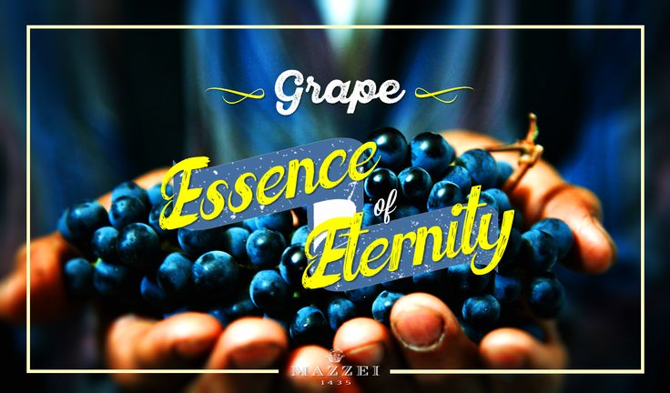 "Grape, Essence of Eternity -  ""It's always the right time for the right wine"". @marchesimazzei  #marchesimazzei #fonterutoli  #wine #tuscany #winestyle #winetasting #winelovers"
