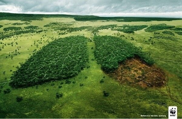 Creative environment protection advertisement  photo