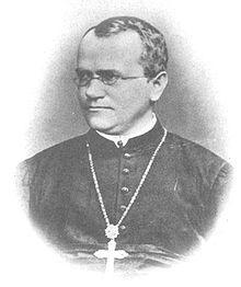 """Johann Gregor Mendel Augustinerpater und Naturforscher (1822-1884) """"Erbsenzählerei im Klostergärtchen"""""""