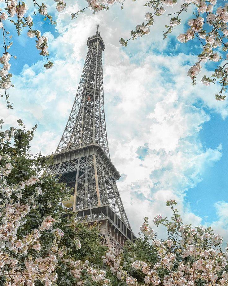 paris, paris france, paris photography, eiffel tower, france, france travel, france photography, spring, flowers, naturescape, naturescape landscapes