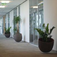 www.zoldlevego.hu Procter & Gamble növénydekoráció referencia  Lebegő növénytartók.