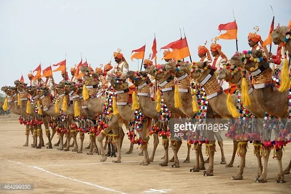 Indian members from the Border Security Force (BSF)'s Barmer Camel Training School assemble before performing during the launch of the Indian Border Security Force (BSF) All Women Camel Safari at the BSF Head Quarters in Bhuj, some 400 kms from Ahmedabad on February 24, 2015