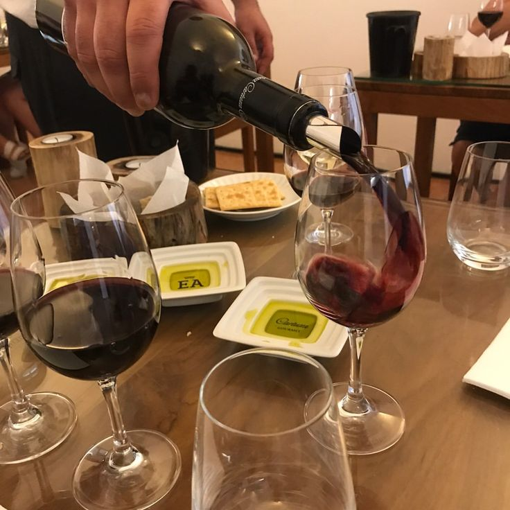 "132 Likes, 2 Comments - 💃🏽WineGirl (@perthwinegirl) on Instagram: ""Tasting my way through #Cartuxa wines. 🍷 👌🏽Cartuxa is one of the oldest wineries in #Alentejo Wine…"""