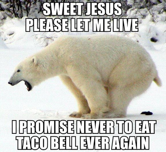 Which end should I be more concerned with? On that note - I can not remember the last time I ate at a Taco Bell...