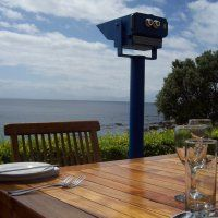 Photos of Black Marlin Seafood Rest...