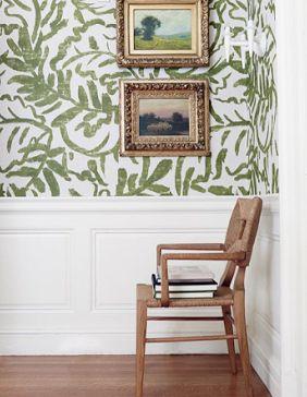 zak & fox wallpaper
