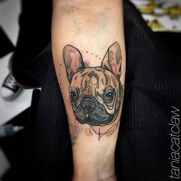 Sketch work french bulldog tattoo on the right inner forearm.