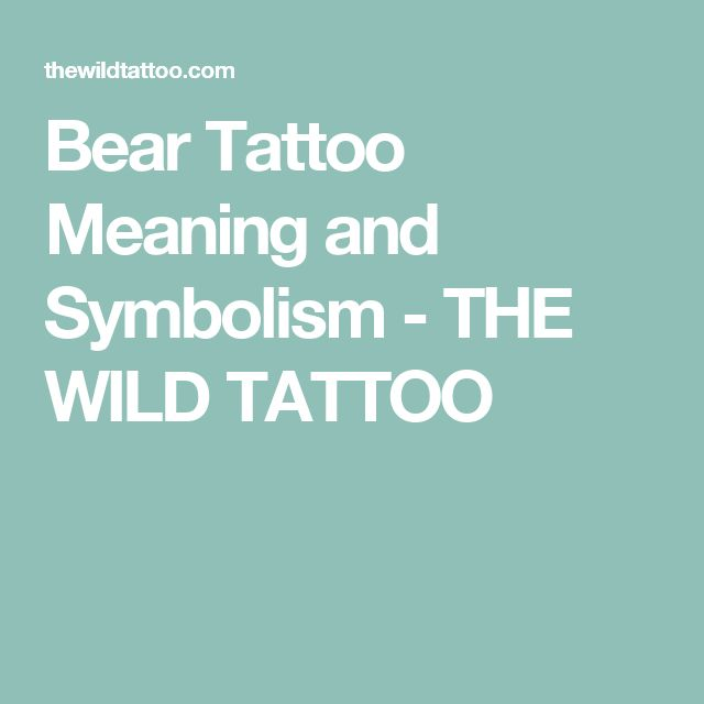 Bear Tattoo Meaning and Symbolism - THE WILD TATTOO