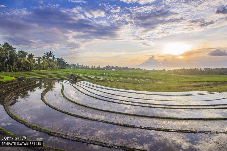 Berwisata alam di bali memang sangat mengasikkan karena Bali gudangnya wisata alam terindah dan bahkan