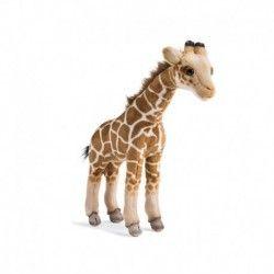 Giraffa Peluche Dipinta a mano