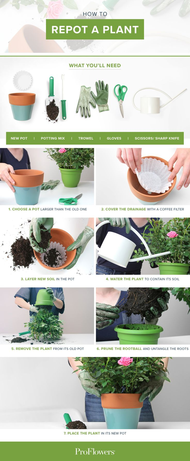 Discover The Latest Tips, Tricks And Expert Secrets To Your Home And Garden  Efforts! DIY And Handy Household And Gardening Ideas To Make Your Life  Easier ...