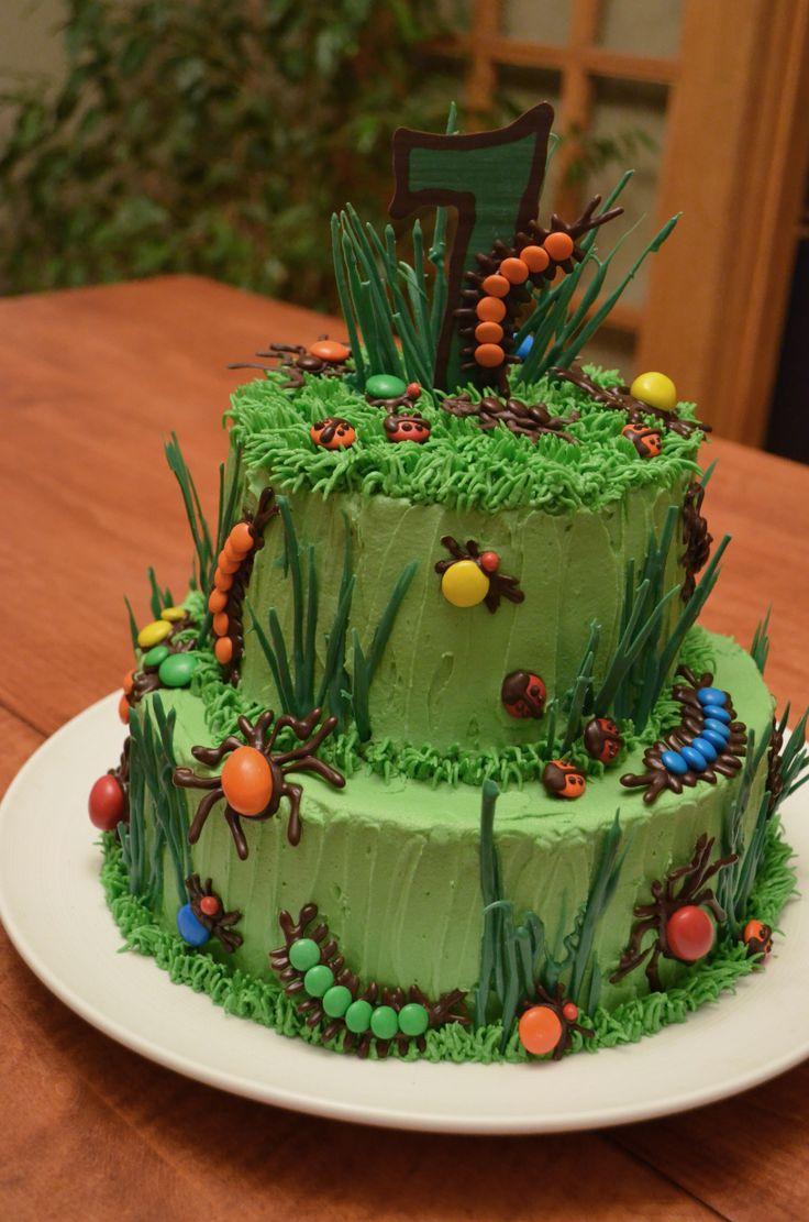 Bug Cake Ideas Birthday Party 69600 Bug Cake
