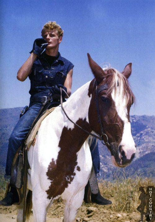 cowboys | Tumblr. Gorgeous horse! | COWBOYS RULE ...