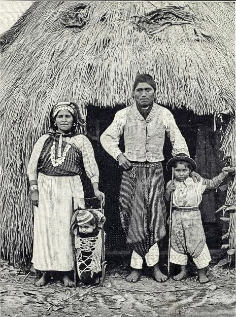 mapuche of south chile, argentina