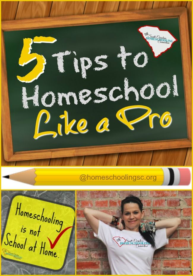 Maybe you are new to homeschooling or maybe you just need some encouragement to keep going. Here's 5 tips to homeschool like a pro. homeschoolingsc.org