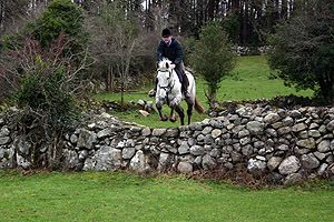 Cross country riding in Ireland...before I get too old to be cold, wet, and sore :)