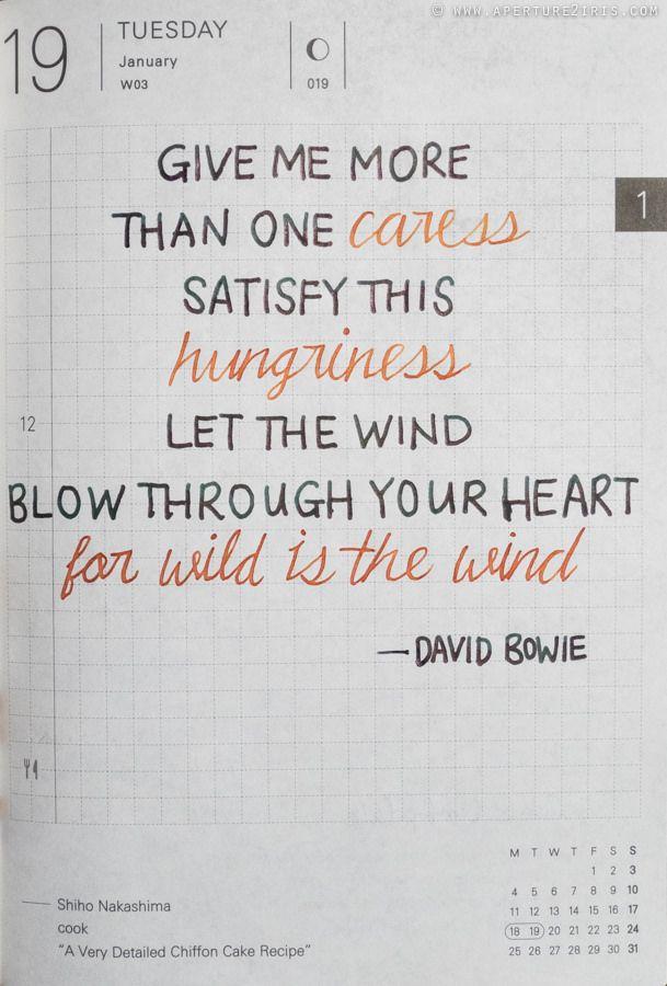 [LYRICS] Wild is the Wind - David Bowie | by theperplexingparadox